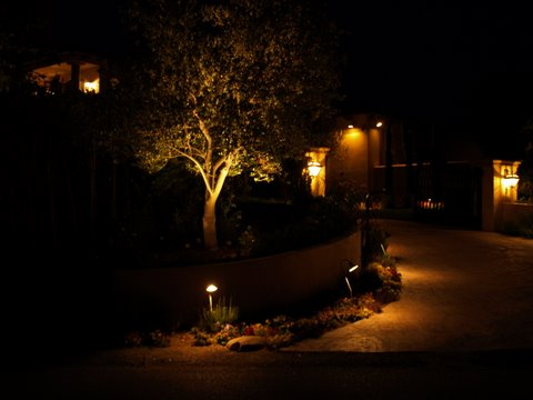 Agoura Landscape Lighting Driveway