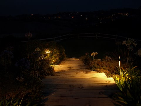Agoura Landscape Lighting Steps