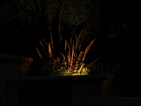 Agoura Landscape Lighting Dramatic Lighting